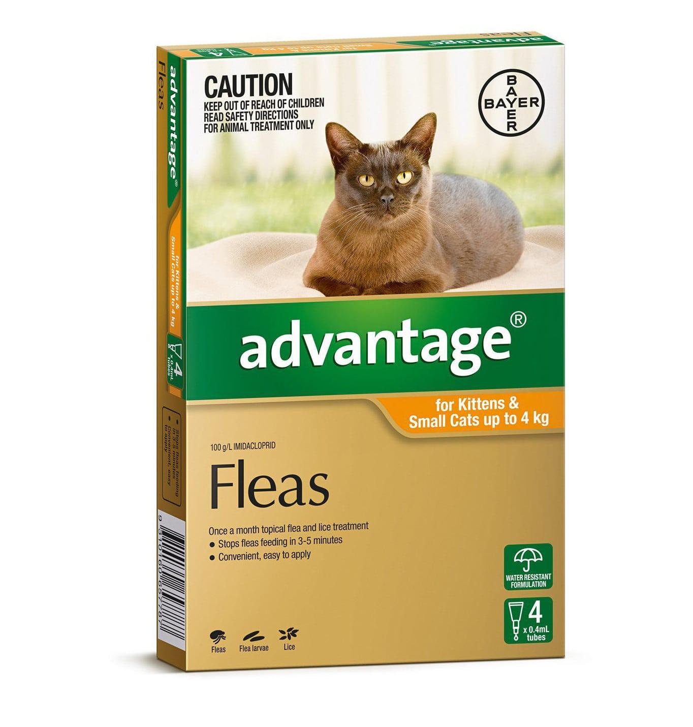 Advantage Flea Treatment Cat Up To 4kg Swanbourne Vet Centre