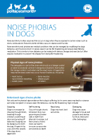 Noise Phobias in Dogs